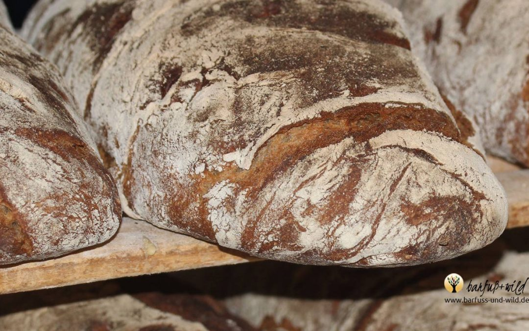 Lebendiges Brot